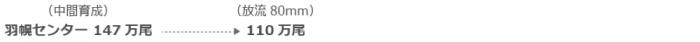 (中間育成)羽幌センター147万尾→(放流80mm)110万尾
