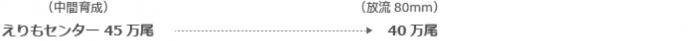 (中間育成)えりもセンター45万尾→(放流80mm)40万尾
